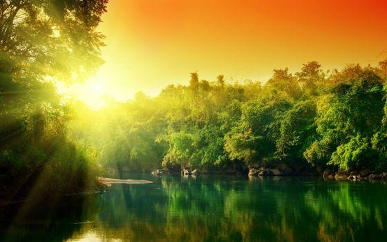 Бесплатные фото река,восход солнца,деревья,лес