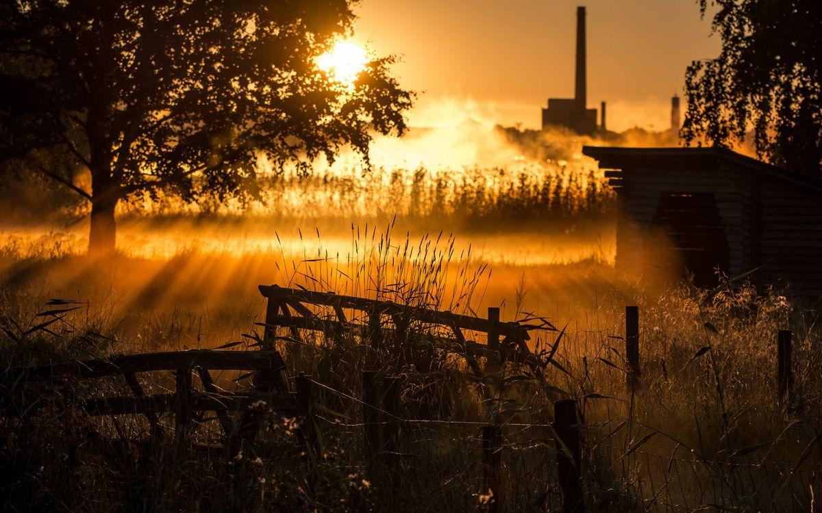 Фото бесплатно восход солнца, туман, утро, сарай, сломанный забор, деревья, трава - на рабочий стол