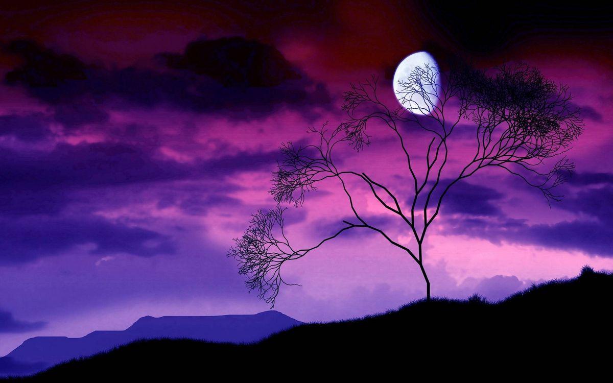 Фото бесплатно ночь, горы, дерево, небо, облака, луна, пейзажи
