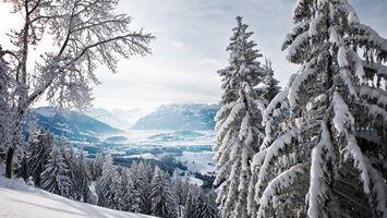 Бесплатные фото зима, горы, деревья, иней, снег, сугробы