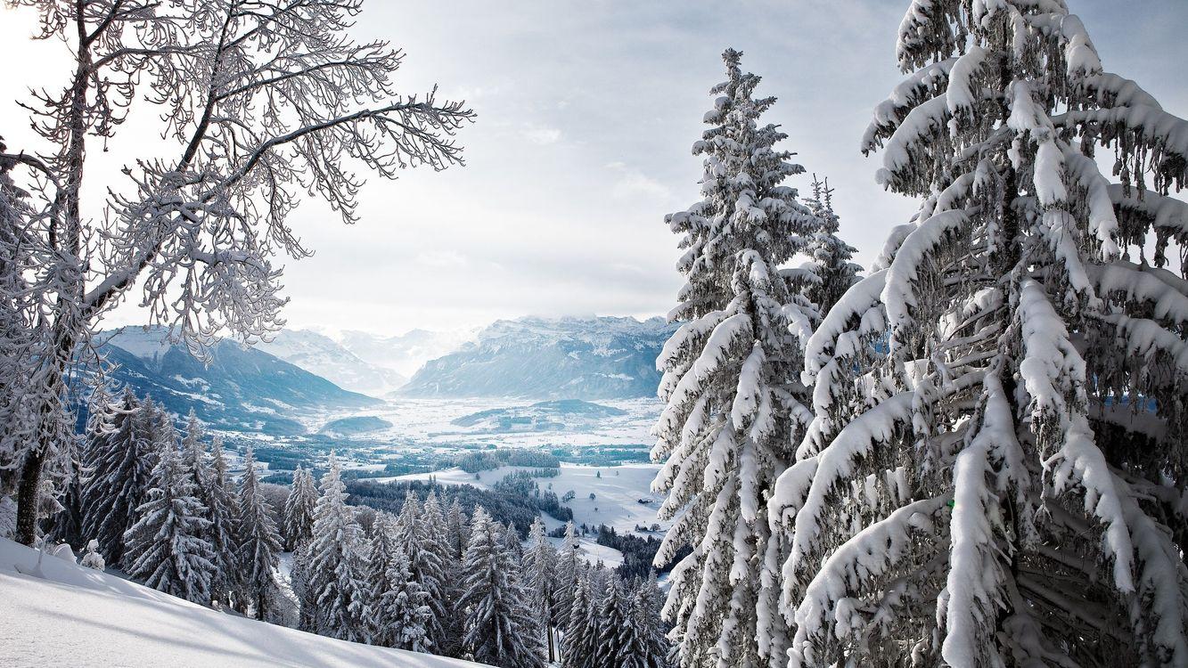 Фото бесплатно горы, иней, снег - на рабочий стол
