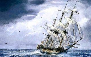 Заставки рисунок, море, шторм, волны, корабль, парусник, крен, птицы, небо