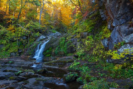 Photo free small waterfall, waterfall in the forest, nature