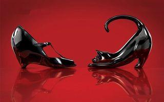 Бесплатные фото статуэтки,черные,туфля,кошка,фон красный,отражение