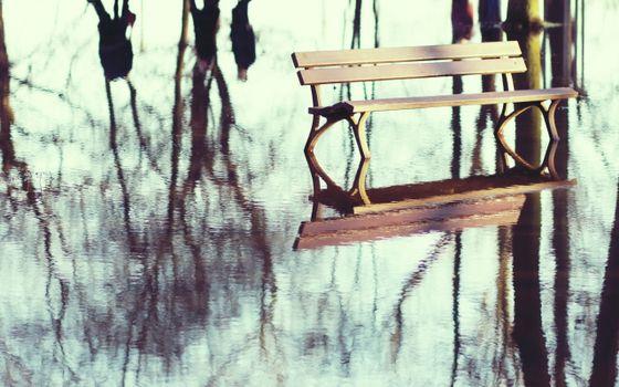 Бесплатные фото лужа,отражение,лавочка,скамейка,деревья,небо