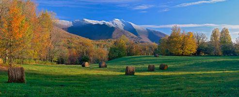 Обои осень, поле, деревья, горы, пейзаж, New England, Vermont