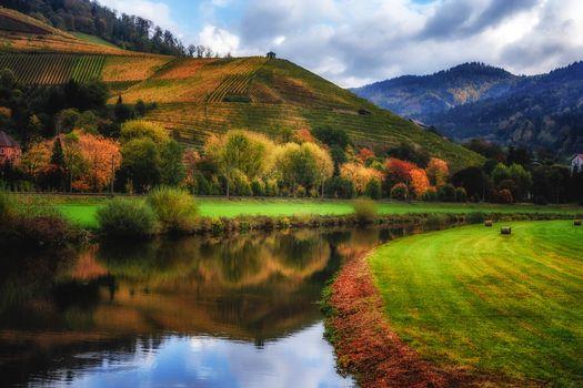 Бесплатные фото Баден Вюртемберг,осень,Autumn in Germany