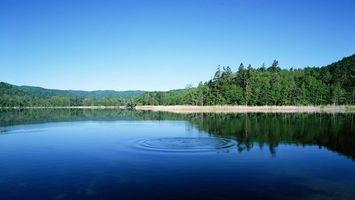 Бесплатные фото река, гладь, круги, берега, деревья, лес, небо
