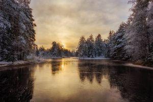 Фото бесплатно закат, озеро, лес