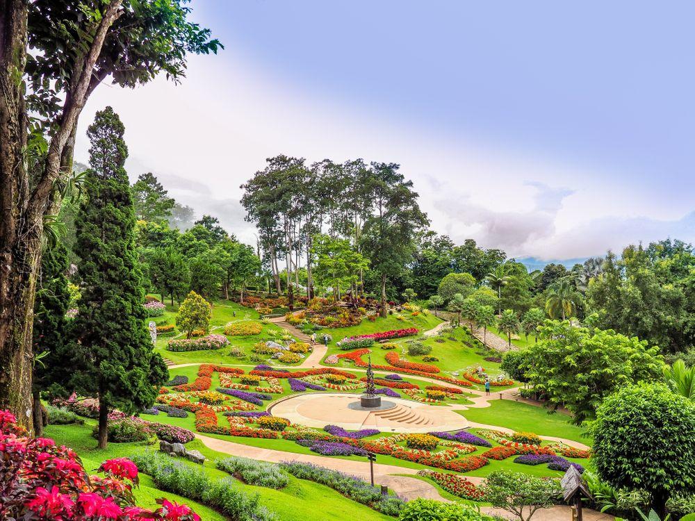 Free photo park, garden, flowerbeds - to desktop
