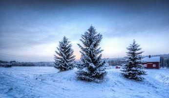 Заставки зима, деревья, домик, пейзаж