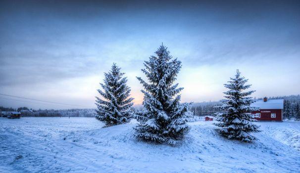 Заставки зима, деревья, домик