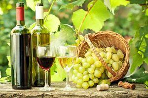 Фото бесплатно виноград, вино, натюрморт