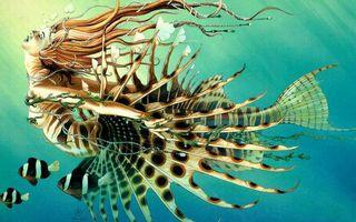 Бесплатные фото рисунок,рыбы,русалка,хвост,плавники,волосы,руки