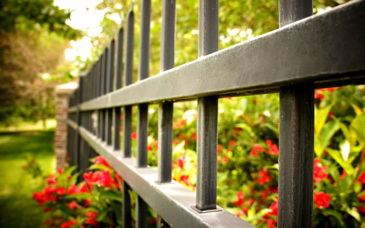 Обои забор, ограда, металл, цветы, красные, растительность на телефон | картинки разное
