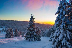 Бесплатные фото закат,зима,холмы,снег,деревья,ели,пейзаж