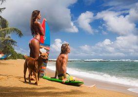 Бесплатные фото серфинг, девушка, мужчина, пляж, берег, собака