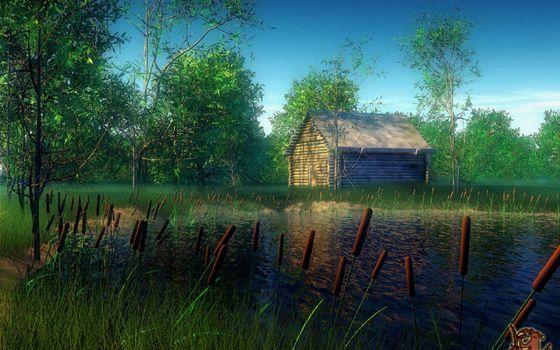 Фото бесплатно озеро, камыши, трава