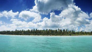 Фото бесплатно тропики, море, остров, пальмы, небо, облака
