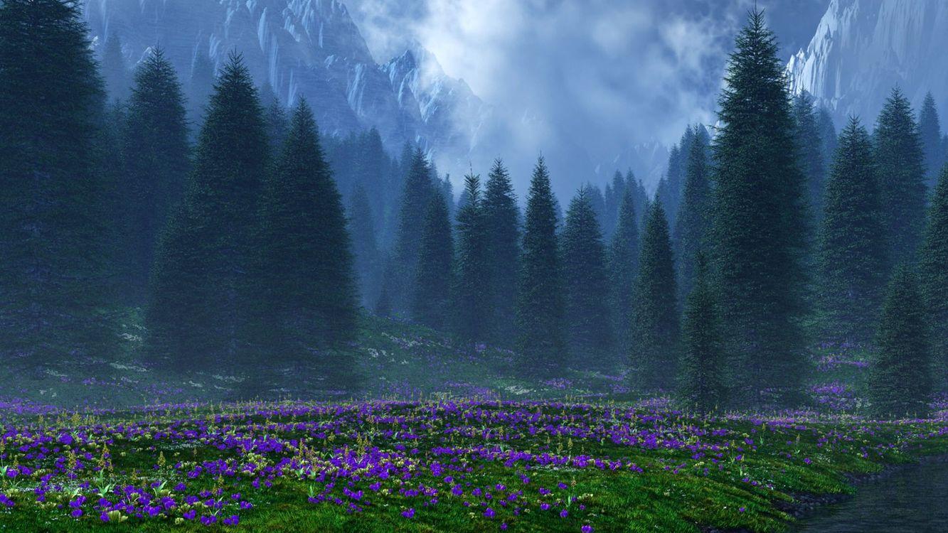 Фото бесплатно поляна, трава, цветы, деревья, горы, облака, природа