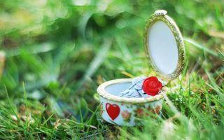 Фото бесплатно шкатулка, крышка, цветок, рисунок, трава, зеленая