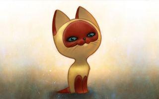 Фото бесплатно котенок, гав, морда