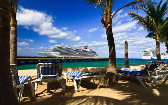 Фото бесплатно тропики, лежаки, пальмы