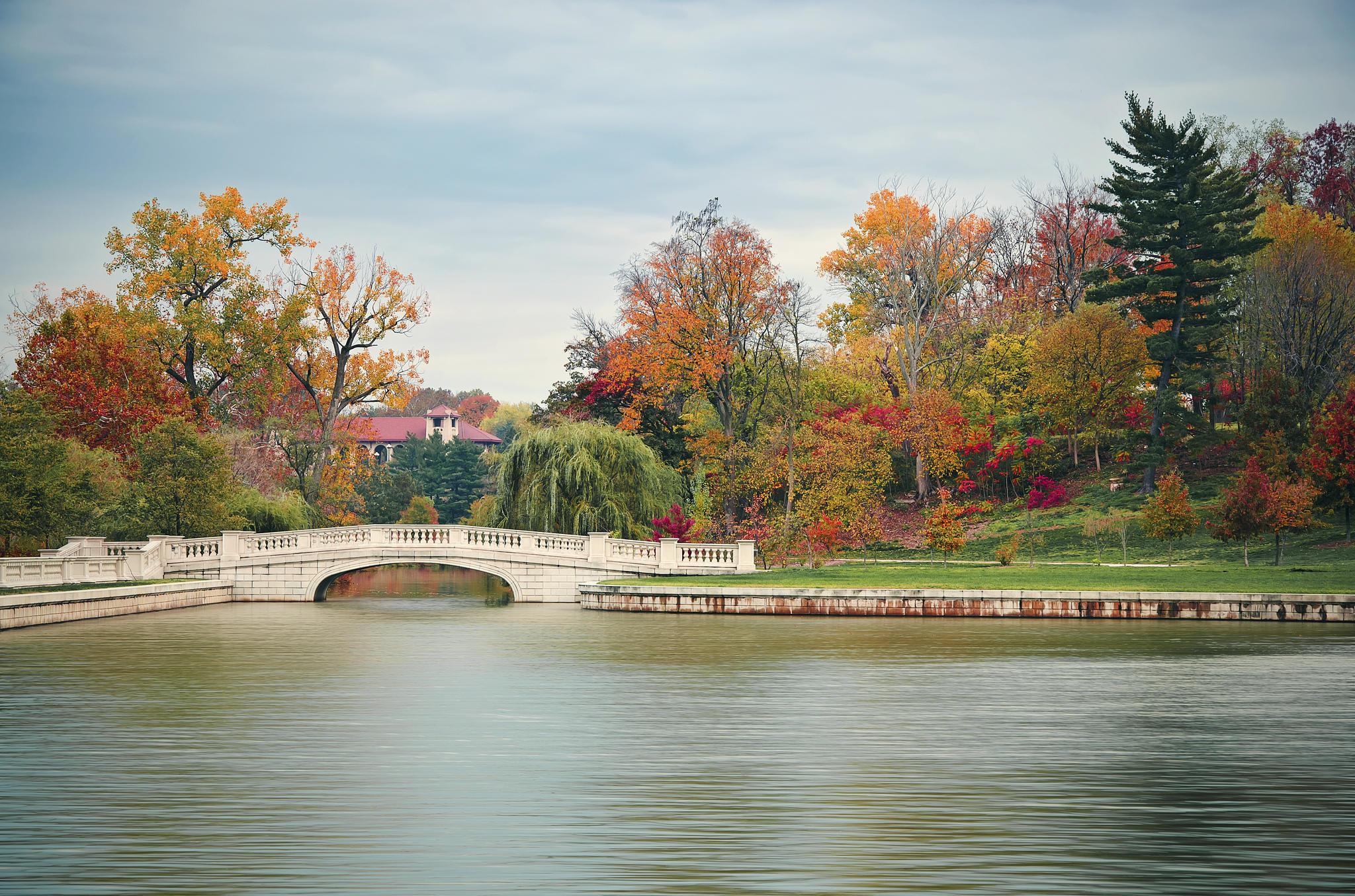 обои Миссури, парк, осень, деревья картинки фото