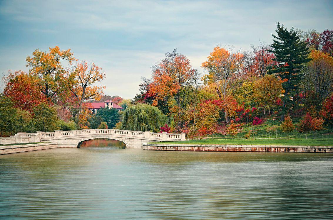 Фото бесплатно Миссури, парк, осень, деревья, водоём, мост, пейзаж, пейзажи