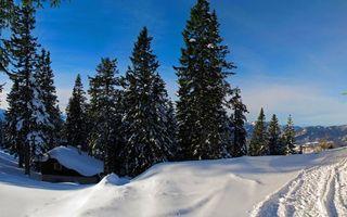 Фото бесплатно зима, горы, дом, деревья, снег, следы, небо