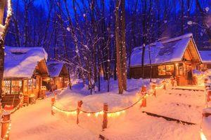 Заставки ночь, дома, огни, деревья, пейзаж