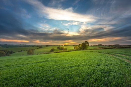 Фото бесплатно Уилтшир, закат, поле