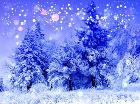 Бесплатные фото зима,деревья,снег,иней,пейзаж