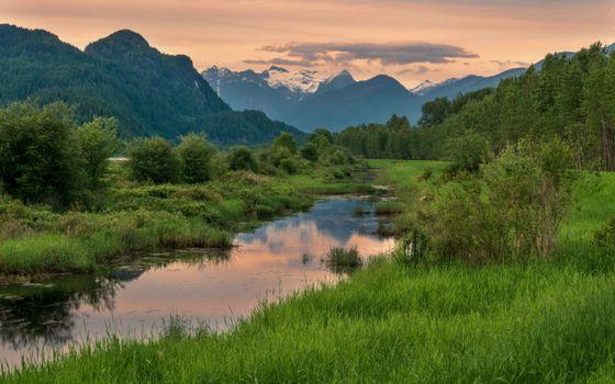 Заставки ручей,горы,деревья