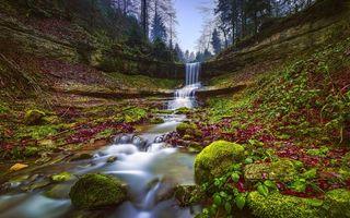 Фото бесплатно водопад, скалы, деревья, мох, камни, природа