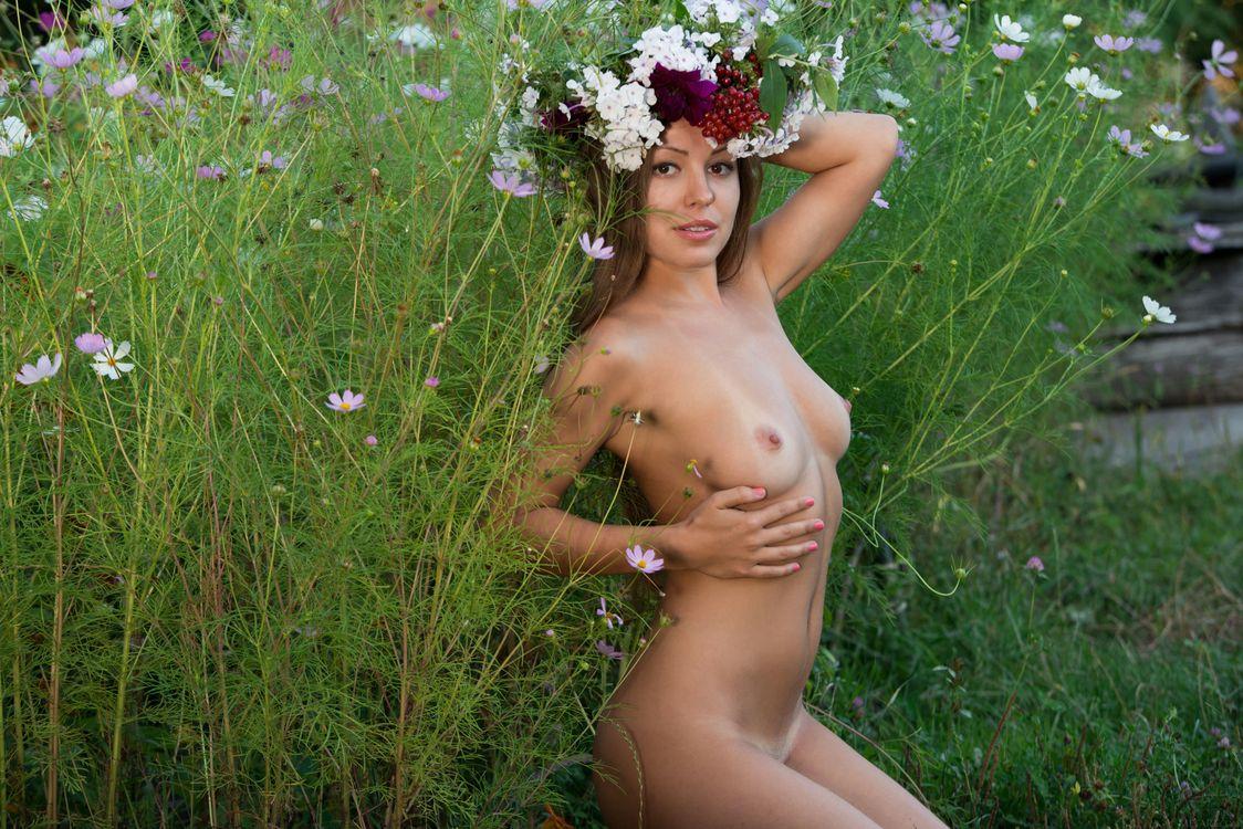 Фото бесплатно Arina G, красотка, голая, голая девушка, обнаженная девушка, позы, поза, сексуальная девушка, эротика, эротика