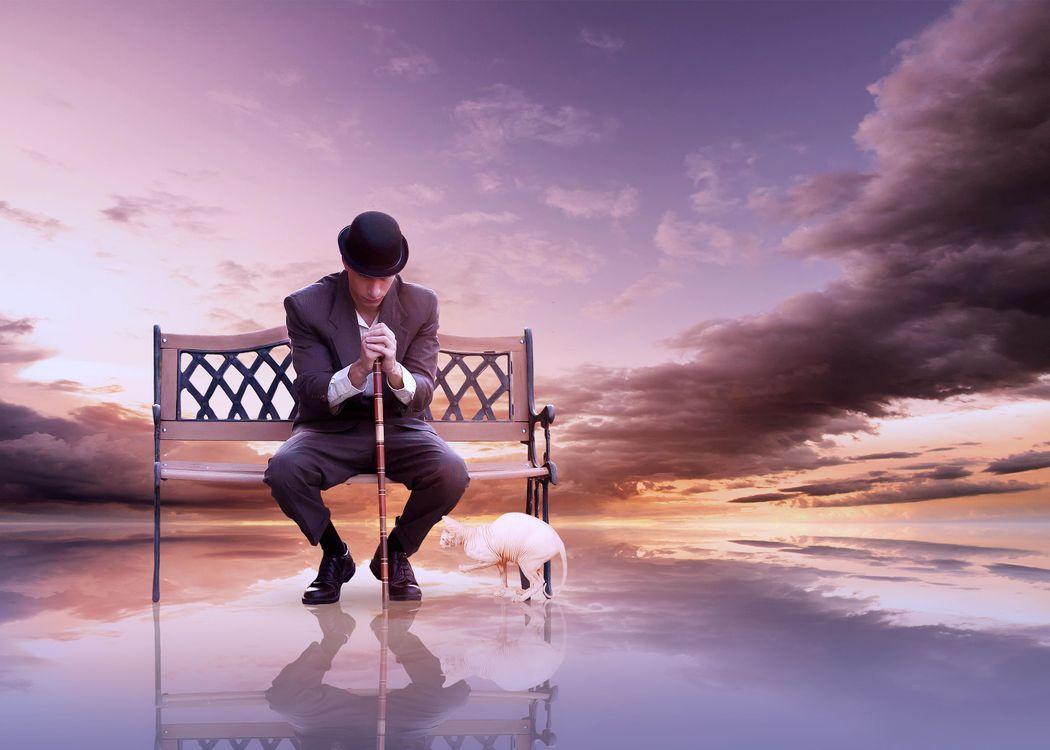 Фото бесплатно лавочка, парень, кошка, закат, рендеринг - скачать на рабочий стол