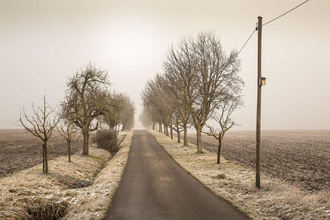 Бесплатные пейзаж, дорога красивые обои на рабочий стол