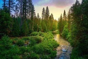 Бесплатные фото Йосемитский национальный парк,Yosemite National Park,Калифорния,США,закат,река,лес