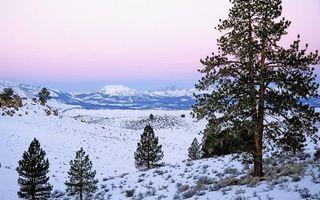Бесплатные фото горы,трава,снег,деревья,небо