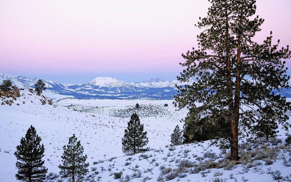 Фото бесплатно горы, трава, снег, деревья, небо, природа