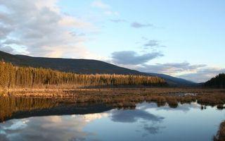 Бесплатные фото осень,озеро,трава,лес,деревья,горы,небо