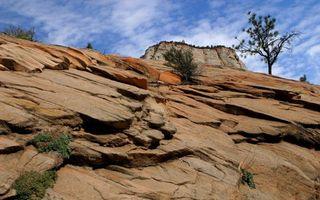 Бесплатные фото гора,камни,пласты,трава,дерево,кустарник