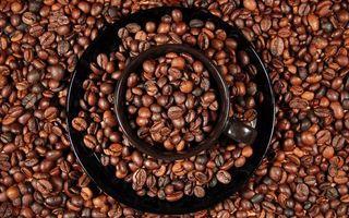 Бесплатные фото чашка,блюдце,черные,зерна,кофе,много