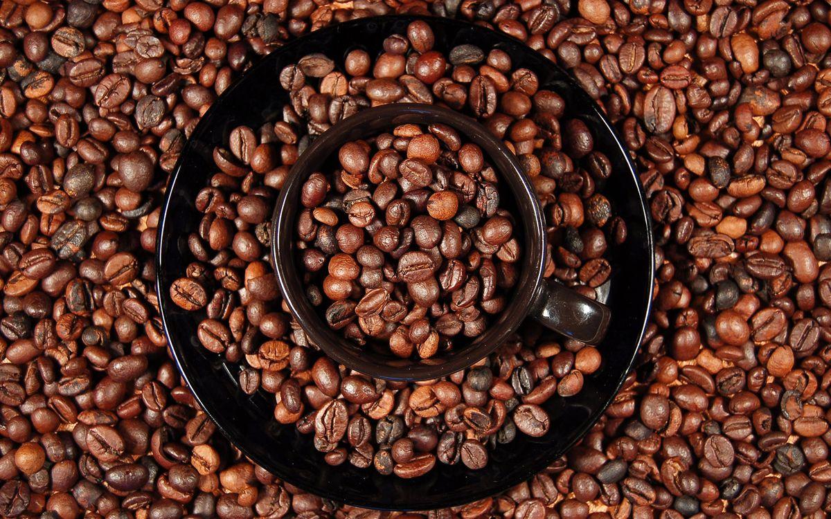 Фото бесплатно чашка, блюдце, черные, зерна, кофе, много, напитки