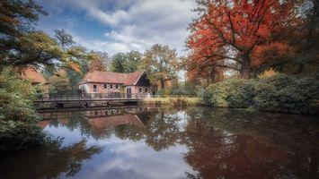Бесплатные фото Голландия,Нидерланды,мельница,Нордхорн,осень,река,деревья