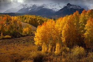 Бесплатные фото осень,горы,деревья,холмы,Colorado,пейзаж