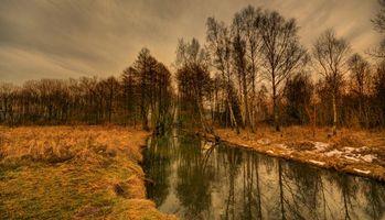 Бесплатные фото поле,река,лес,деревья,пейзаж