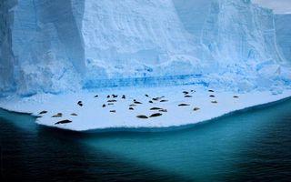 Заставки север, море, айсберг