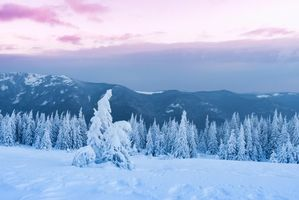 Бесплатные фото зима, снег, сугробы, горы, деревья, пейзаж